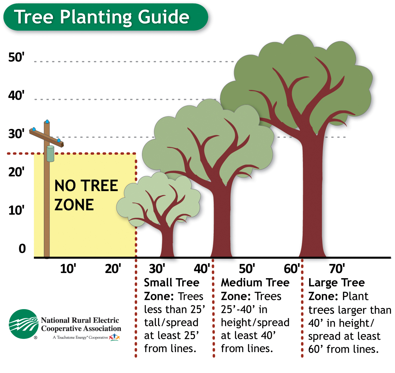 Tree planting guide showing where trees can be planted in relation to power lines